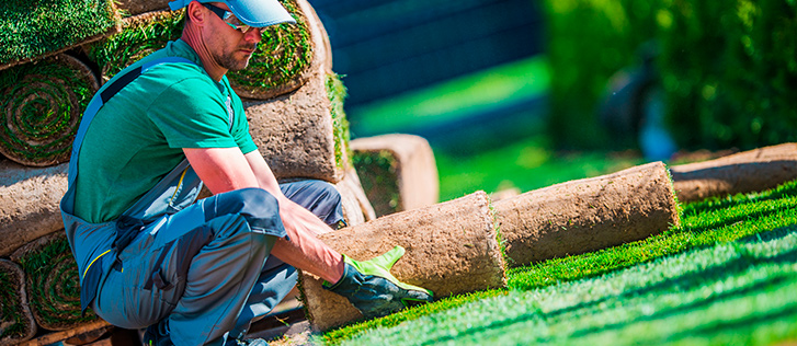Professional Landscaping Services in Poulsbo WA