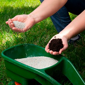 Lawn Fertilization in Silverdale WA