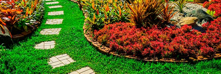 Lawn Care Services in Poulsbo WA