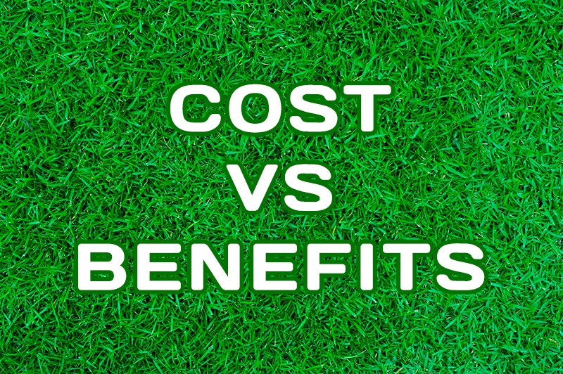 Cost-Benefit Analysis of Your Landscaping Project