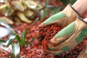 Biggest Mulching Benefits