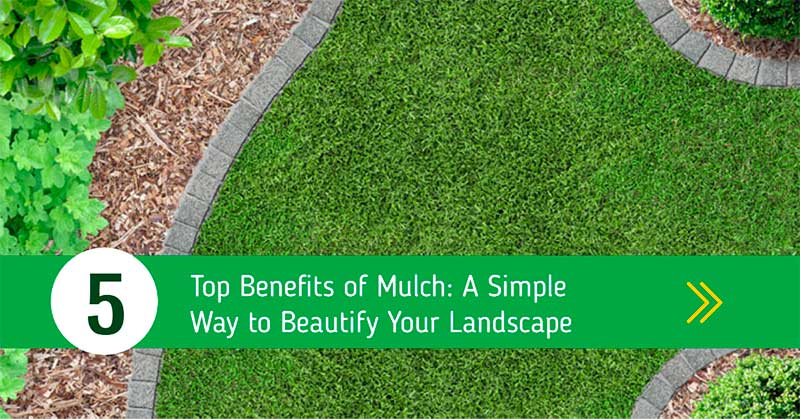 main benefits of mulching