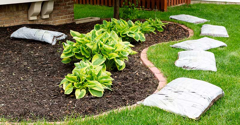 mulch adds curb appeal