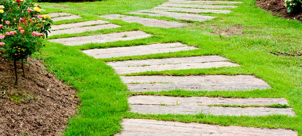 Beautiful Green and Natural Yard— Alex's Landscaping and Excavating
