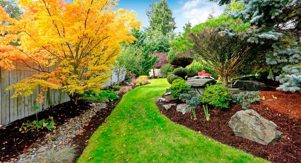 Benefits of Proper Landscape Design—Alex's Landscaping and Excavating