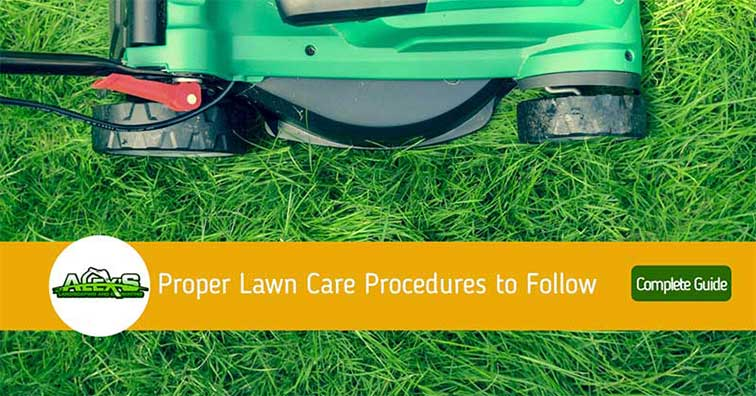 the ultimate guide to lawn care
