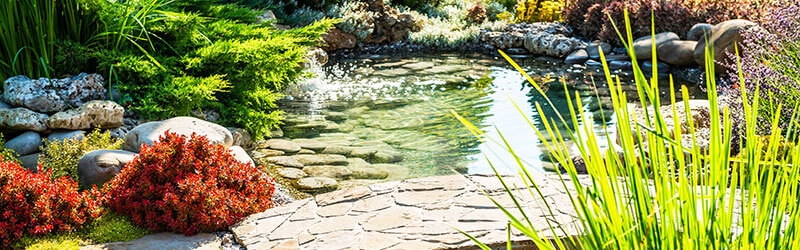landscaping contractor in Kitsap County WA